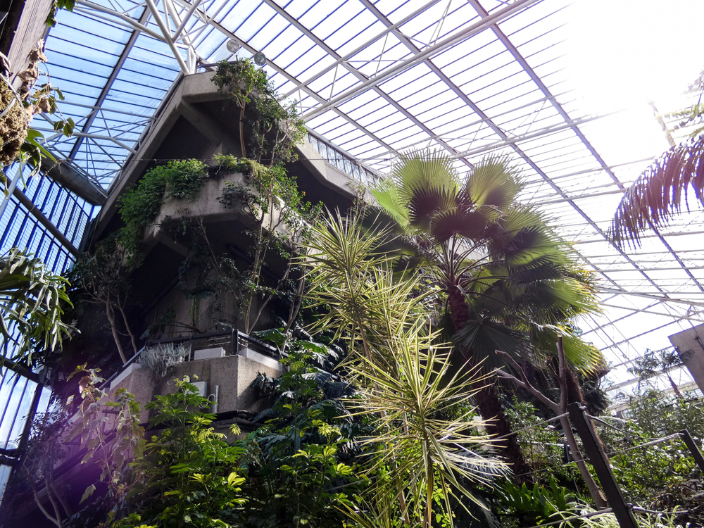 Conservatory at the Barbican